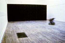 Exhibition: Donald Rodney, 1997, slide 16