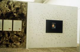 Exhibition: Stuart Brisley, 1996, slide 23