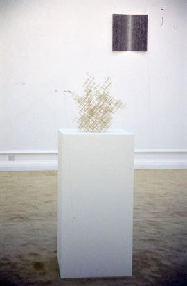 Exhibition: Domestic Bliss, 2000, slide 25