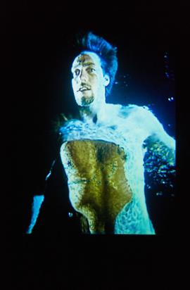 Exhibition: Bill Viola, 1997, slide 4