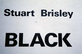 Exhibition: Stuart Brisley, 1996, slide 1
