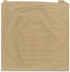 Anna Lucas: paper bag 3, back